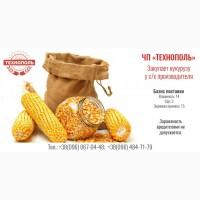 Закупаем кукурузу на постоянной основе ЧП Технополь