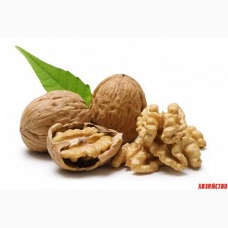 Закупаем грецкий орех, тыквенную семечку, фасоль, Полтавская обл