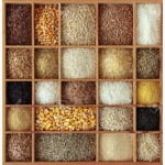 Закупаем зерновые и масличные культуры любого качества