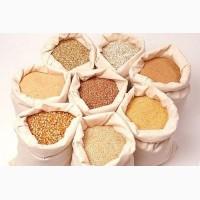 Продам крупи від виробника: ячмінні, перлові, пшеничні, горох колотий зелений та жовтий