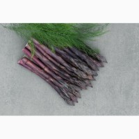 Продам саджанці спаржі фіолетової в Києві