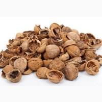 Скорлупа грецкого ореха от 1 тонны