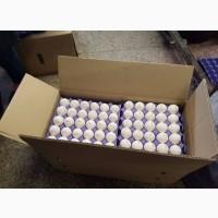 Продам куриные яйца с0 с1 в идеальном качестве