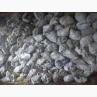 Кора соснова 50л в білому цукровому мішку