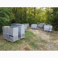 Продам продукты пчеловодства с собственной пасеки
