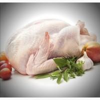 Продам мясо птицы! Курица, индейка, тушки + разборк
