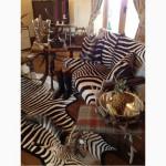 Шкура зебры из ЮАР