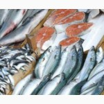 Рыба в ассортименте (замороженная)
