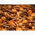 Закупаем зерновые культуры, ячмень, пшеницу