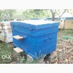 Улья, (улики), лежаки, дадан многокорпусные на 300 и145 рамку для пчел