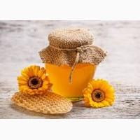 Закупаем мед дорого в днепропетровской области