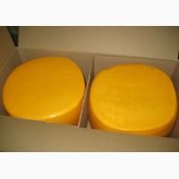 Оптом сырный продукт