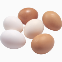 Куплю яйцо куриное