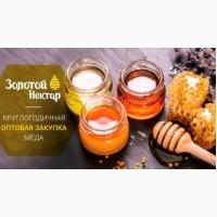 Куплю мед оптом, без антибиотика