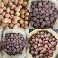 Продам орех грецкий в скорлупе Калибр 28+; 30 оптом на экспорт, а также по Украине