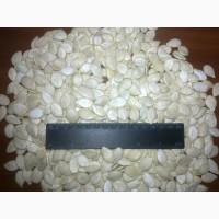 Продам посевной материал тыквенной семечки Сероволжская