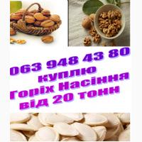 Фирма представитель ливанской компании LightWalnuts покупает грецкие орехи от 20 тонн