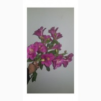 Продажа цветка
