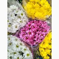 Цветы Краматорск