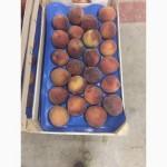 Продам персик и нектарин оптом