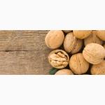 Куплю ядро ореха с западных областей