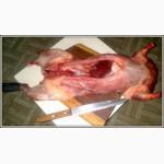 Куплю нутрий тушки мяса
