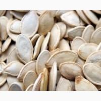 Тыквенные семечки Гарбузове насіння