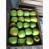 Продам яблука різних сортів з холодильника газовані