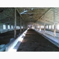 Продается бывший животноводческий комплекс