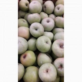 Продам яблоки, сорт Семеренко, с холодильника