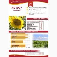 Семена подсолнечника ЛСТ-907 Лабуле (Laboulet)