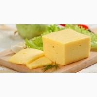 Cыр твёрдый (продукт)