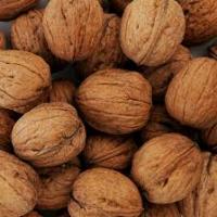 Продам грецкий орех целый та ядро на експорт