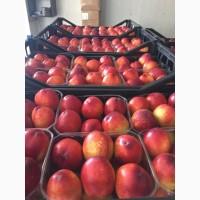 Персик спелый от производителя (Турция): новый сезон июнь 2021