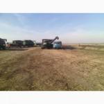 Найму зерновозы на уборку сои в Киевской, Житомирской