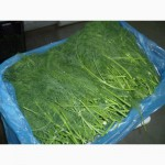 Продаем зелень из испании