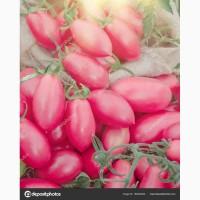 Компания заключает договор на поставку розовых томатов оптом