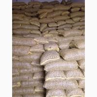 Принимаем заказы на грецкий орех целый урожая 2020 г