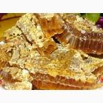 Продажа мёда в сотах, стоимость 80 грн. за 1 кг