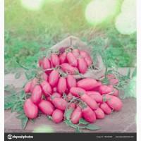Заключим договор на поставку розовых помидоров оптом