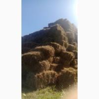 Солома гречневая пшеничная оасяная тюкованая