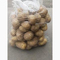 Продаем литовский картофель