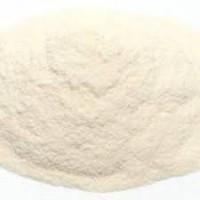 Сухой яичный белок - Альбумин