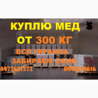 Закупка мёда в ДНЕПРОПЕТРОВСКОЙ И ПОЛТАВСКОЙ области от 500 кг