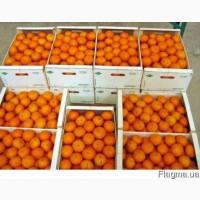 Продам Апельсин с Турции оптом