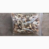 Продам сухі гриби ( сухой гриб)