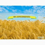 Продам плодово-овощную консервацию, г. Киев, и по Украине