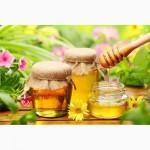 Купим мёд в любом количестве по всей Украине без антибиотиков