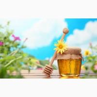 Закупаем мёд в Николаевской обл
