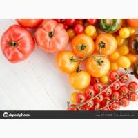 Продажа розовых томатов крупным оптом